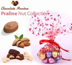 Praline Nut Chocolate Collection